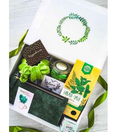 Подарочный набор Зеленый кактус